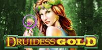Cover art for Druidess Gold slot
