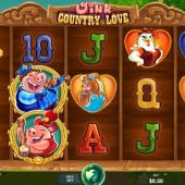 oink country love slot game