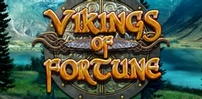 Cover art for Vikings of Fortune slot