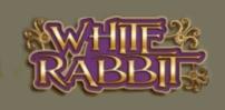 Cover art for White Rabbit slot