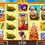 pets slot game