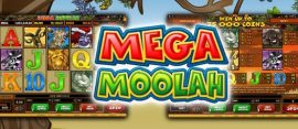 mega moolah slot screenshots and logo