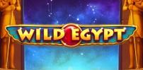 Cover art for Wild Egypt slot