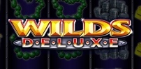 Cover art for Wilds Deluxe slot