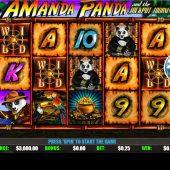amanda panda slot game