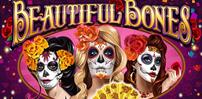 Cover art for Beautiful Bones slot