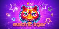 Cover art for Electric Tiger slot