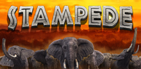 Cover art for Stampede slot