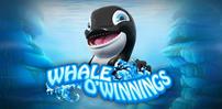 Cover art for Whale O' Winnings slot