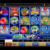 what a hoot slot game