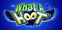 what a hoot slot logo
