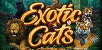 Cover art for Exotic Cats slot