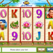 the real king aloha hawaii slot game