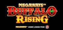 Cover art for Buffalo Rising slot