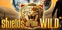 Cover art for Shields of The Wild slot