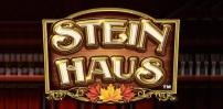Cover art for Stein Haus slot