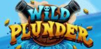 Cover art for Wild Plunder slot