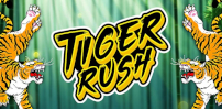 Cover art for Tiger Rush slot