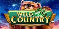 Cover art for Wild Country slot