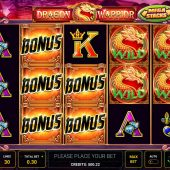dragon warrior slot game