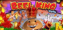 Cover art for Reel King Mega slot