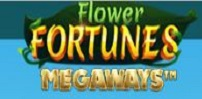 Cover art for Flower Fortunes Megaways slot