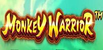 Cover art for Monkey Warrior slot