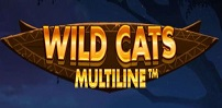 Cover art for Wild Cats Multiline slot