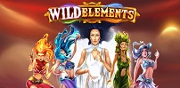 Cover art for Wild Elements slot