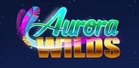Cover art for Aurora Wilds slot