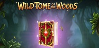 Cover art for Wild Tome of The Woods slot