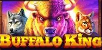 Cover art for Buffalo King slot