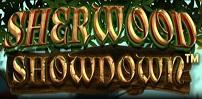 Cover art for Sherwood Showdown slot