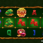 double lucky line slot game