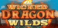Cover art for Wicked Dragon Wilds slot