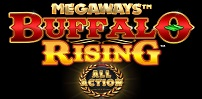 Cover art for Buffalo Rising All Action slot