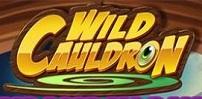 Cover art for Wild Cauldron slot