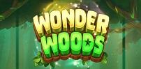Cover art for Wonder Woods slot