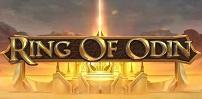 Cover art for Ring of Odin slot
