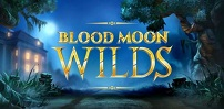 Cover art for Blood Moon Wilds slot