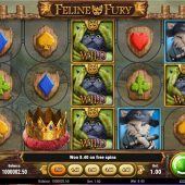 feline fury slot game