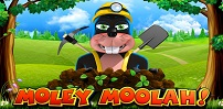 Cover art for Moley Moolah slot