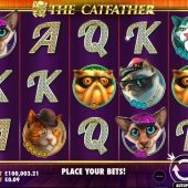 the catfather slot game