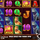 buffalo king megaways slot game