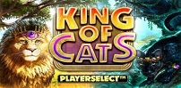 Cover art for King of Cats Megaways slot