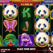 pandas fortune 2-slot game