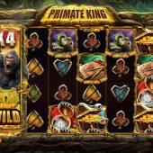 primate king slot game