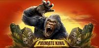 Cover art for Primate King slot