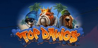 Cover art for Top Dawg$ slot