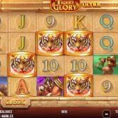 tigers glory ultra slot game